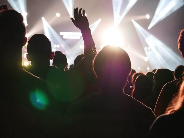 concert-crowd-hand-952422klein.jpg