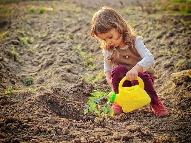 Meisje met een plastic gieter die een gekiempt plantje water geeft
